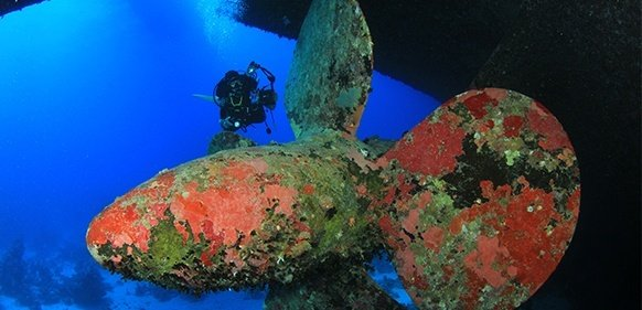 book a Hurghada dive day trip package