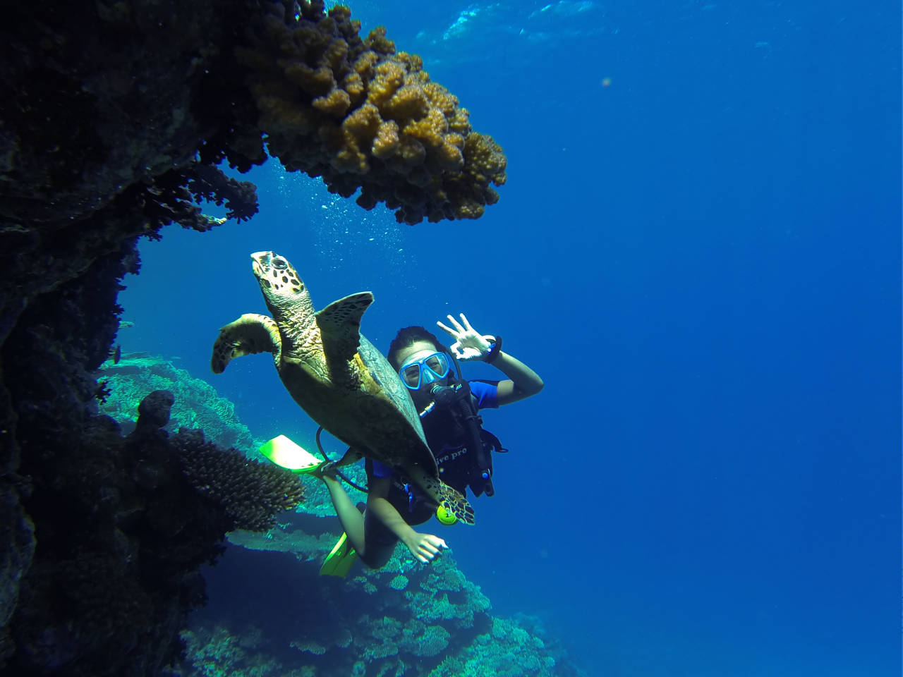 Diving course in hurghada