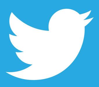 Twitter Logo www.marsaalamtauchen.com