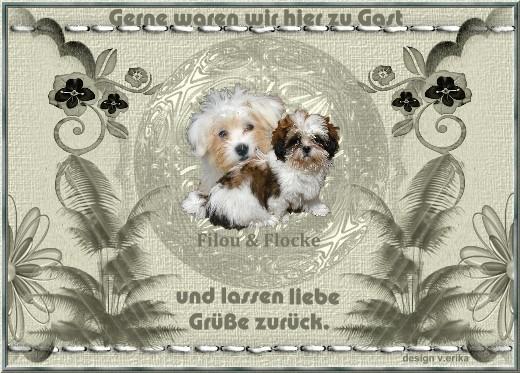 An den Beitrag angehängtes Bild: http://file2.hpage.com/014907/34/bilder/gb_gast_vfil-flo.jpg