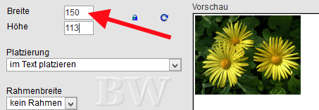hPage, nPage, HP, Homepage, klick auf kleines Vorschaubild, Anzeige von großes Bild