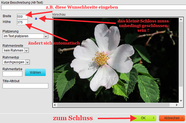 hPage, nPage, HP, Homepage, Bild Bilder verkleinern