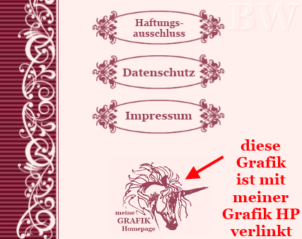 hPage, nPage, HP, Homepage, verlinkte Grafik in Navigation / im Menü
