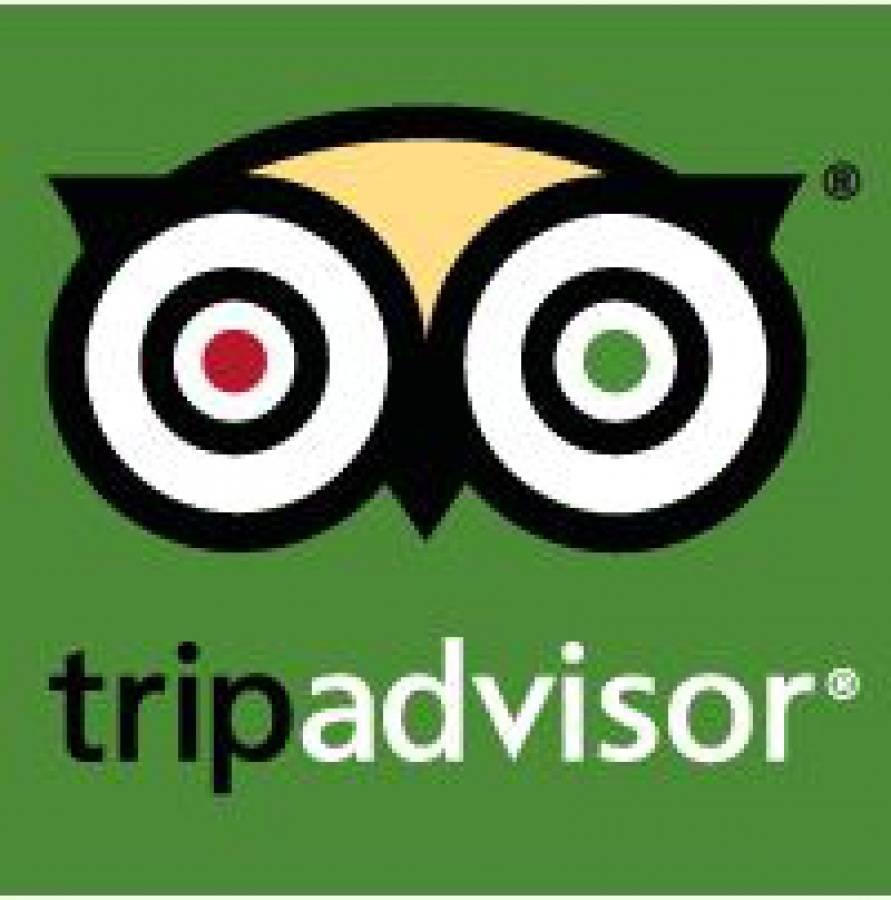 Logo TripAdvisor www.ronjenjehurghada.com